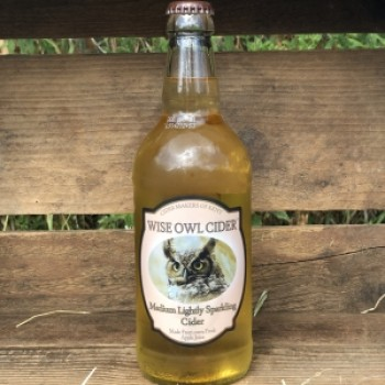 Wise Owl Medium Lightly Sparkling Cider 12x500ml Case